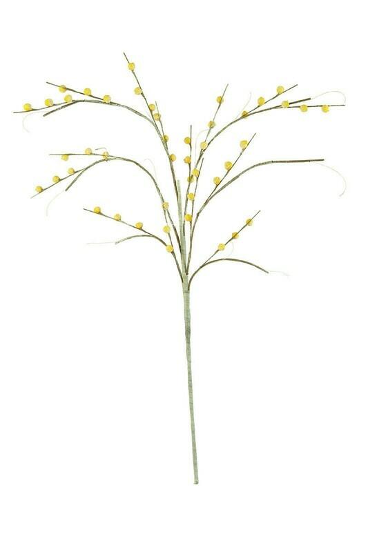 Ylw Bulb Botanica #2378