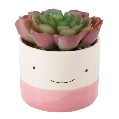 Succulent- Happy