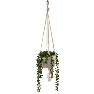 Artificial Succulent Macrame Hanging Donkey Tails