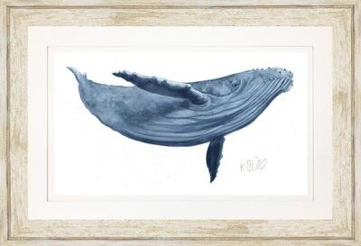 Blue Whale w Frame