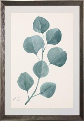 Sage Botanicals Framed Art