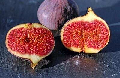 Fig Balsamic