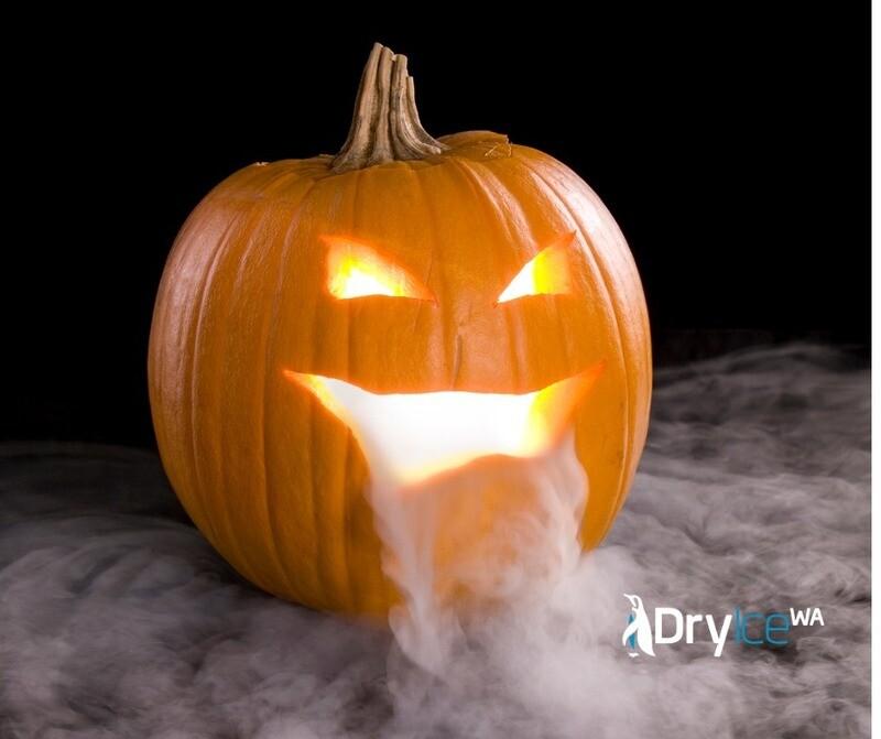 Halloween Special 10kg in Foam Esky