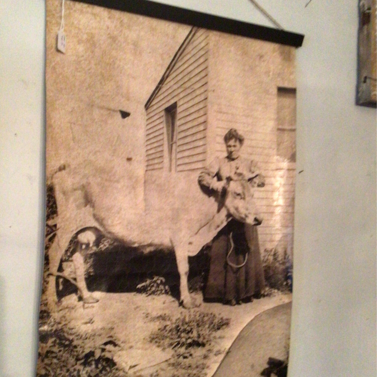 Vintage Cow/Woman Picture On Canvas
