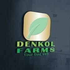 Denkol Shop