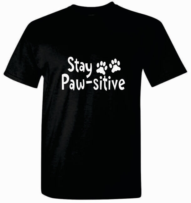 $20 Donation and Stay Positive T-Shirt - 3 Colors