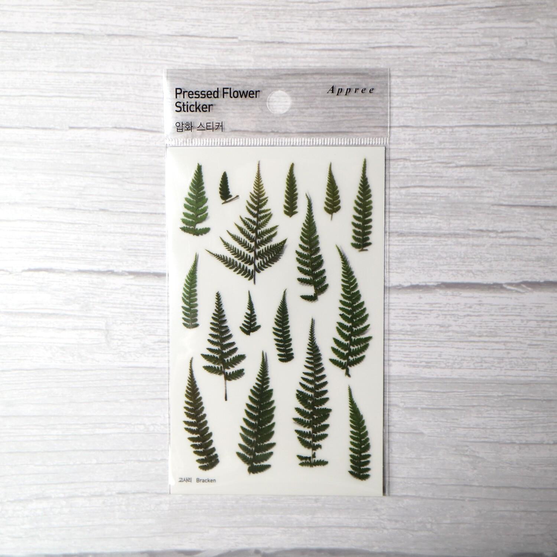 Appree Bracken Sticker Sheet