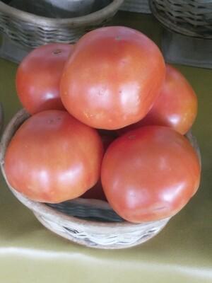 Farmers Market: Basket of Tomatoes