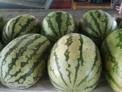 Farmers Market: Whole Watermelons (Seeded)