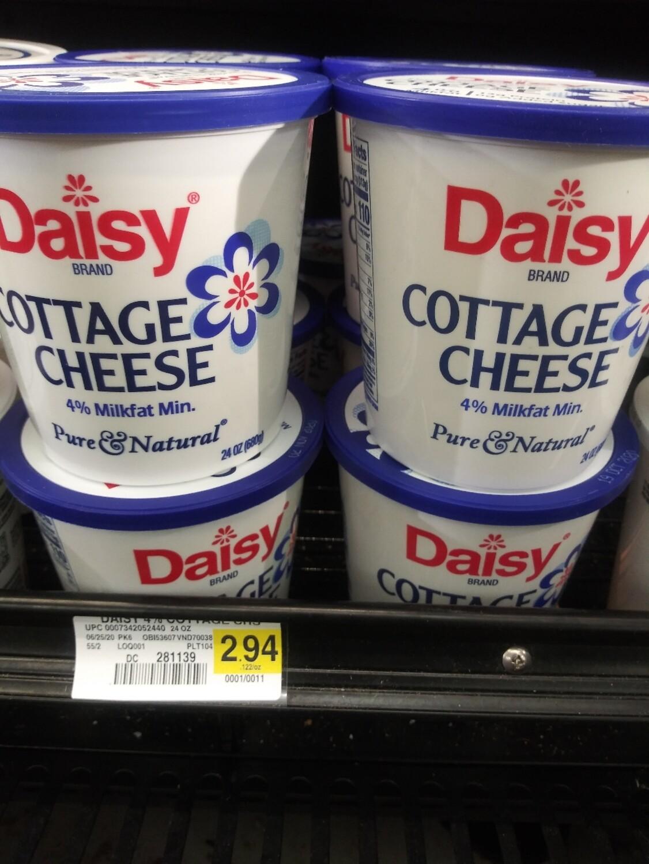 Cash Saver: Daisy Cottage Cheese  24oz
