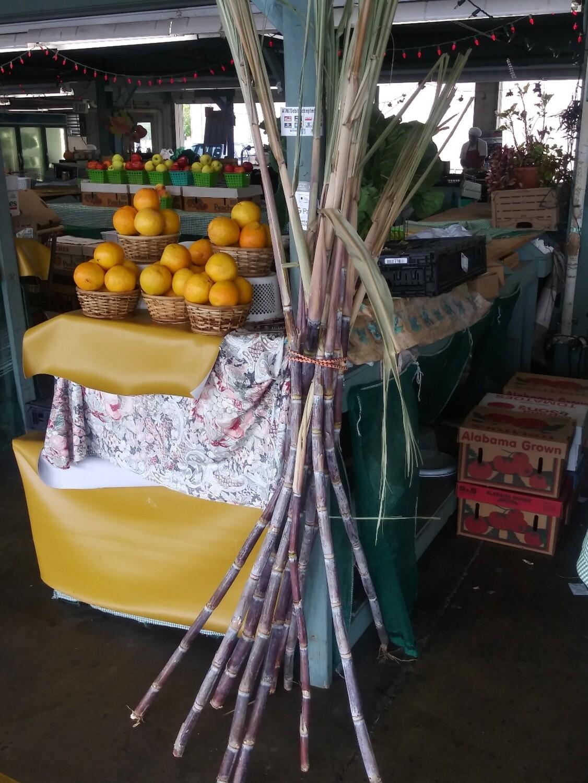 Farmers Market: Sugar Cane