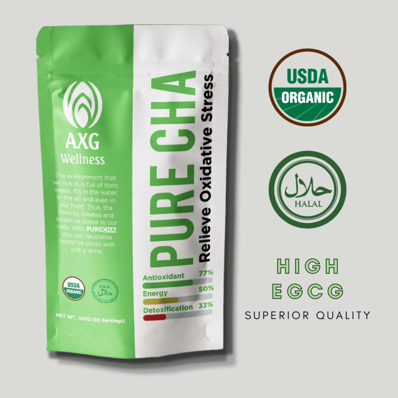 PURECHA High Antioxidant 100% Organic Ceremonial Grade Green Tea Matcha Powder [HALAL-Certified] [USDA ORGANIC]