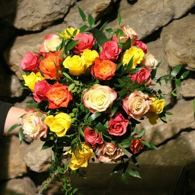 Dreißig Rosen