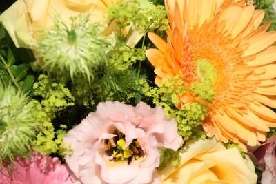 Blumen  (Auftragsabteilung)