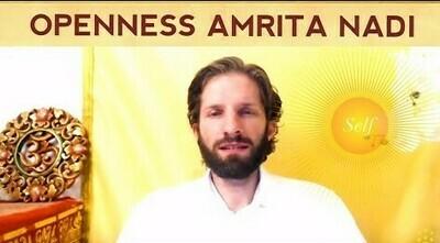 Premium: Activate your Spiritual Heart, Inner Sun, Amrita Nadi Guided Meditation   Mindo
