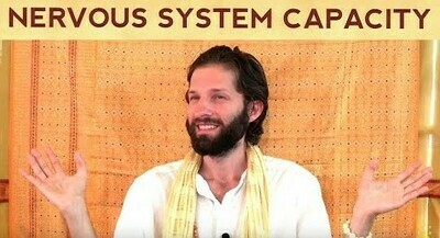 Premium: Your Nervous System Capacity Determines Your Ability to Sustain High Vibration