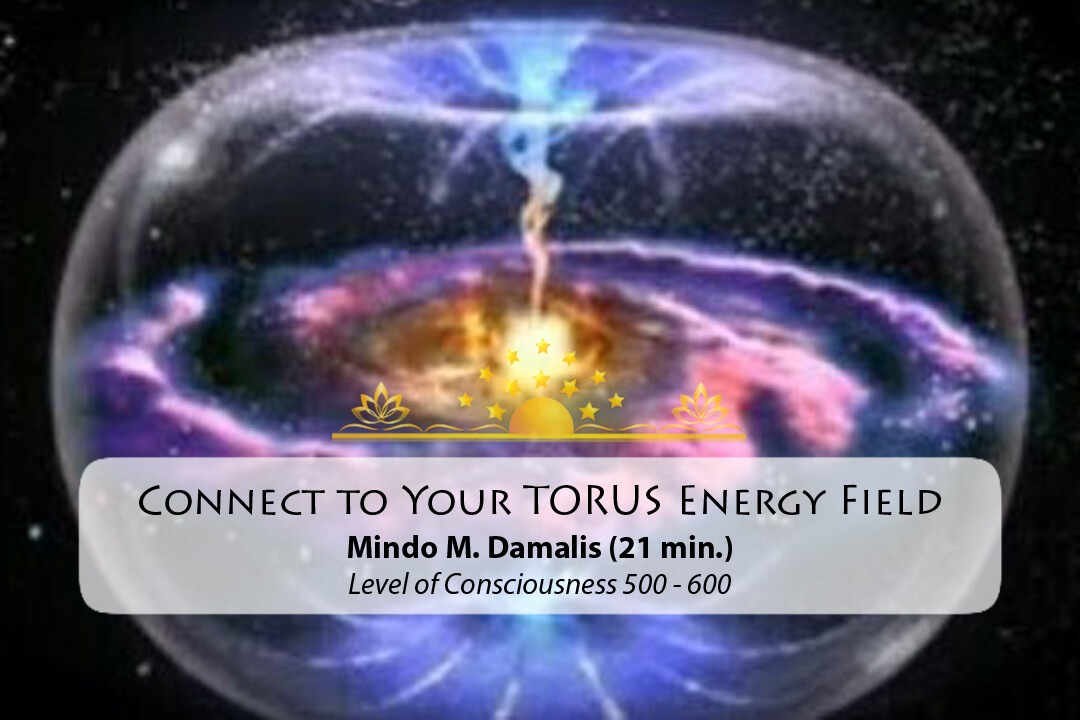 Connect to your Torus Energy Field
