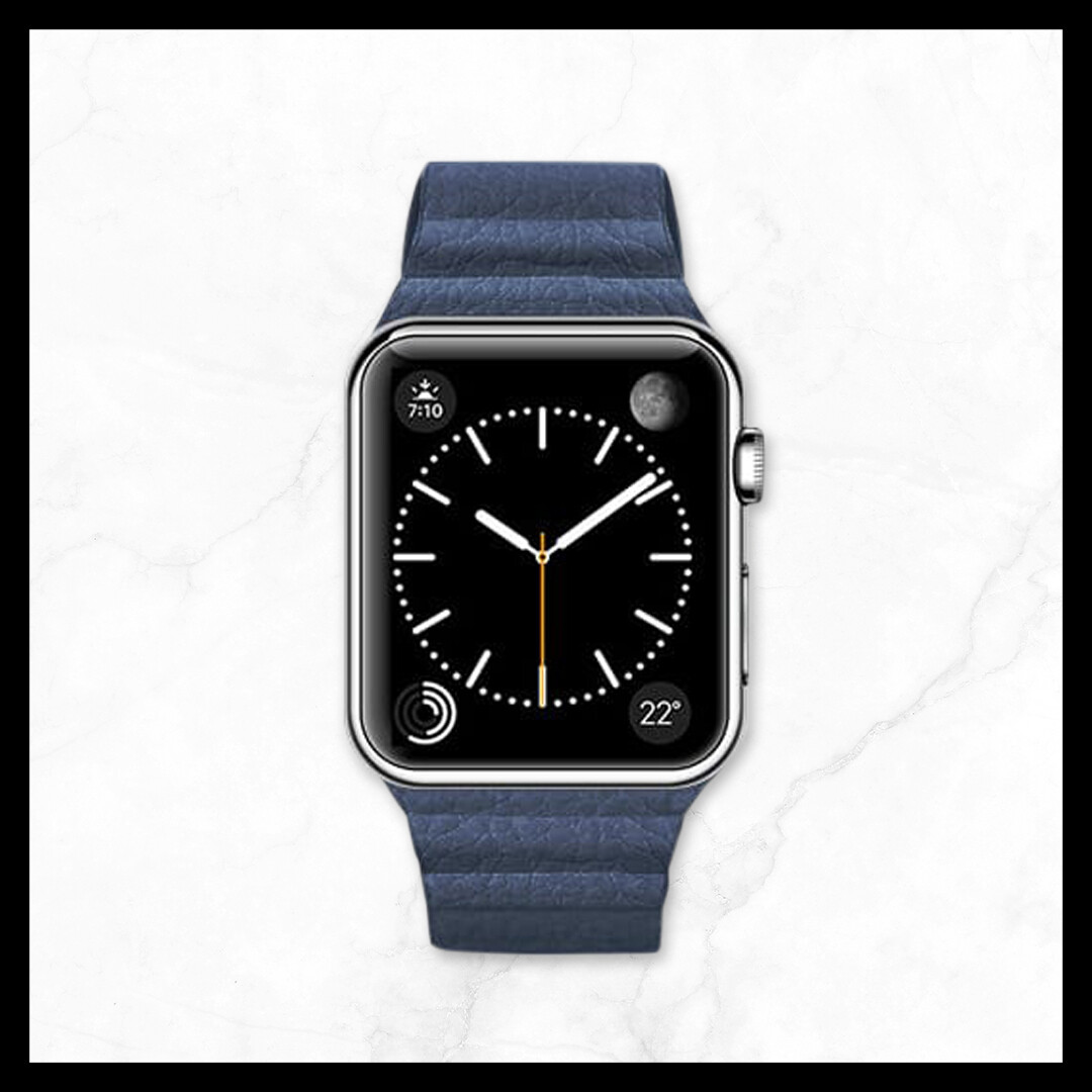 Techmate Milanese Magnetic Genuine Leather Strap