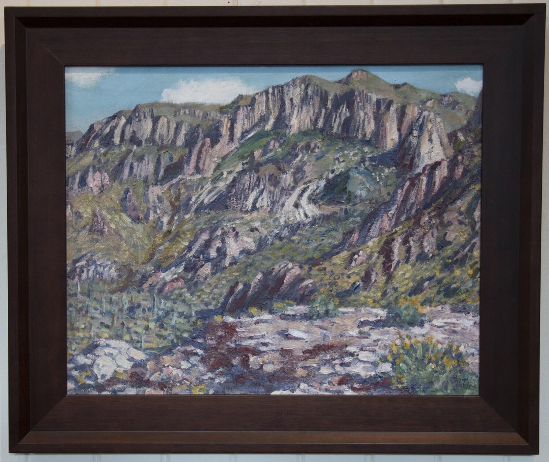 """Southeast Arizona"" by Sam Hughes"