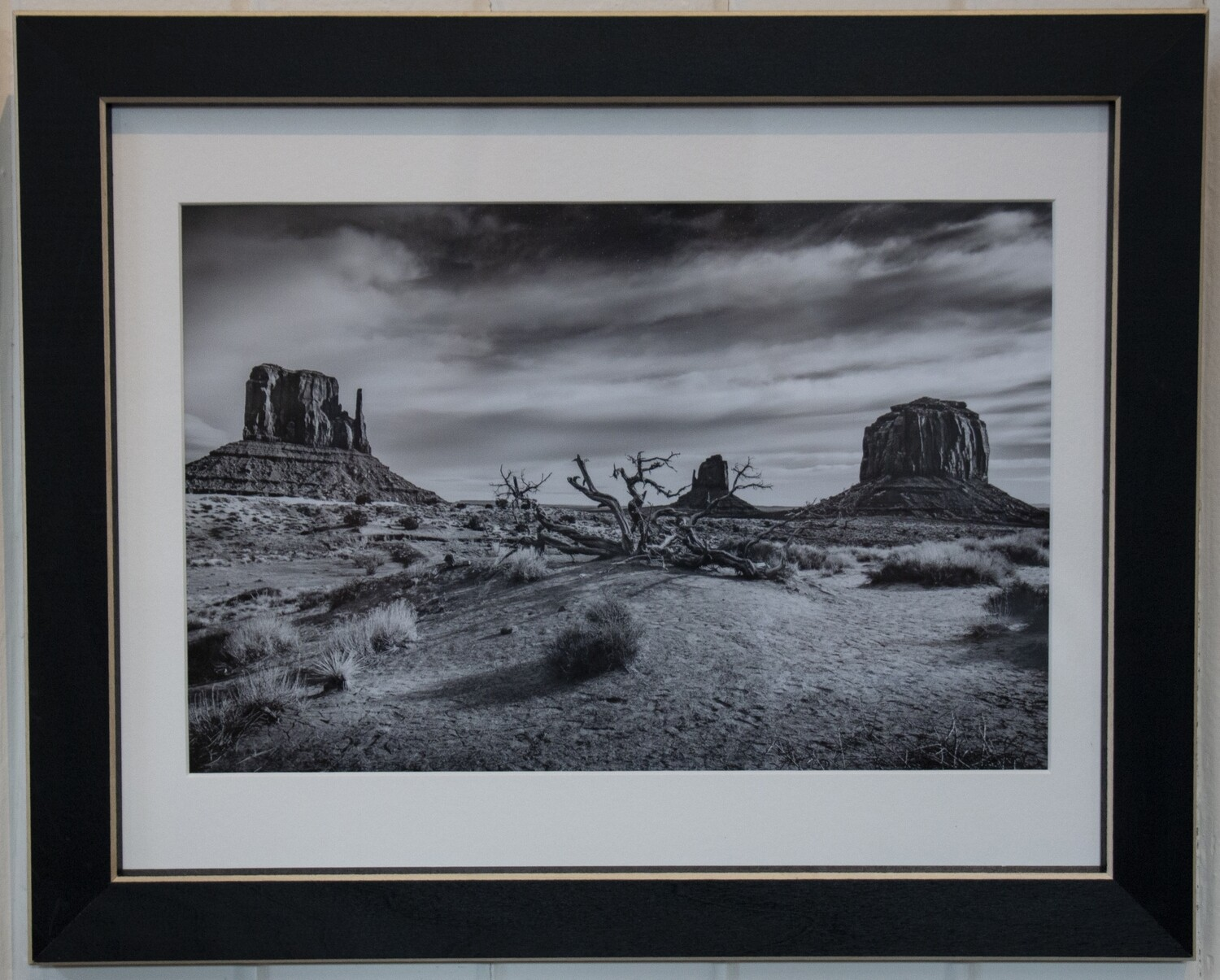 """Monument Valley"" by Ted Shafer"