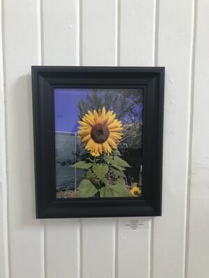 RA Flower by Chris Hook