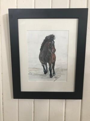 Mustang Love by Lisa Baca