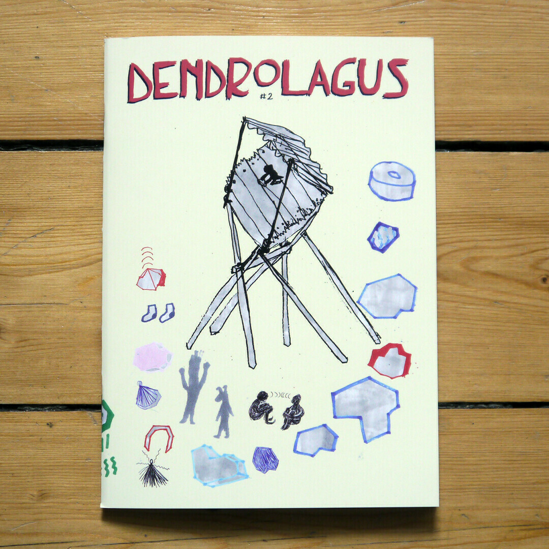 Dendrolagus #2
