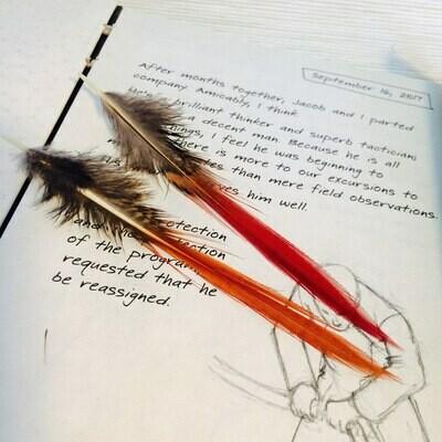 Перья фазана красного 5 шт.