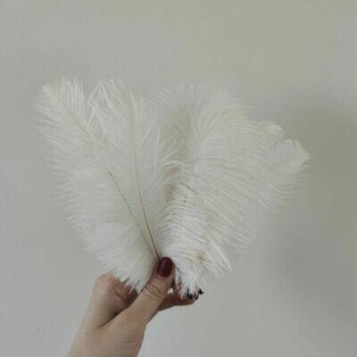 Перо страуса белое 15 - 20 см.
