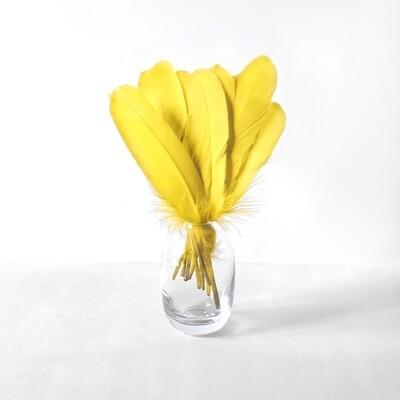 Гусиные перья желтые ровные 20шт.