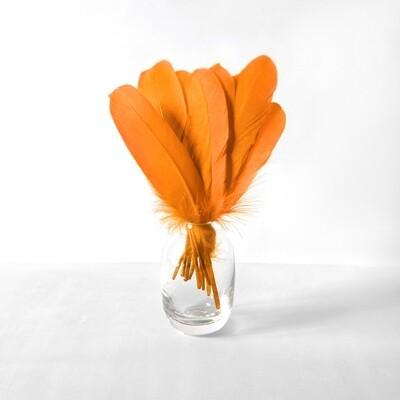 Гусиные перья оранжевые ровные 20шт.