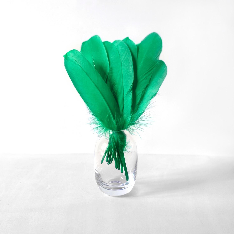 Гусиные перья зеленые ровные 20шт.