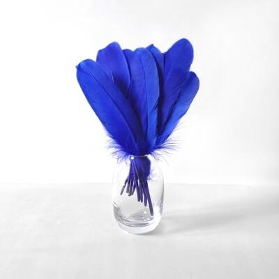 Гусиные перья синие ровные 20шт.