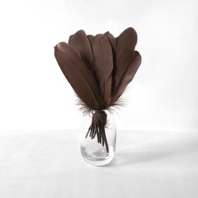 Гусиные перья темно-коричневые ровные 20шт.