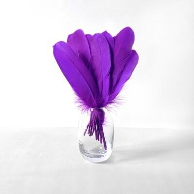 Гусиные перья фиолетовые ровные 20шт.