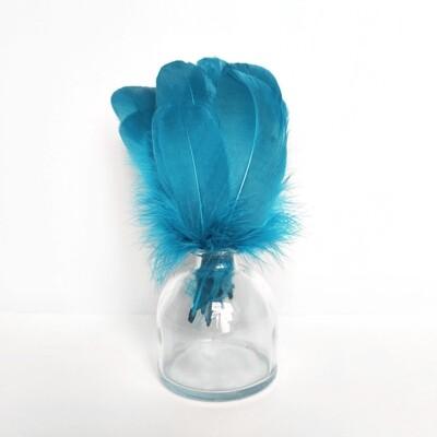 Гусиные перья голубые скругленные 20шт.
