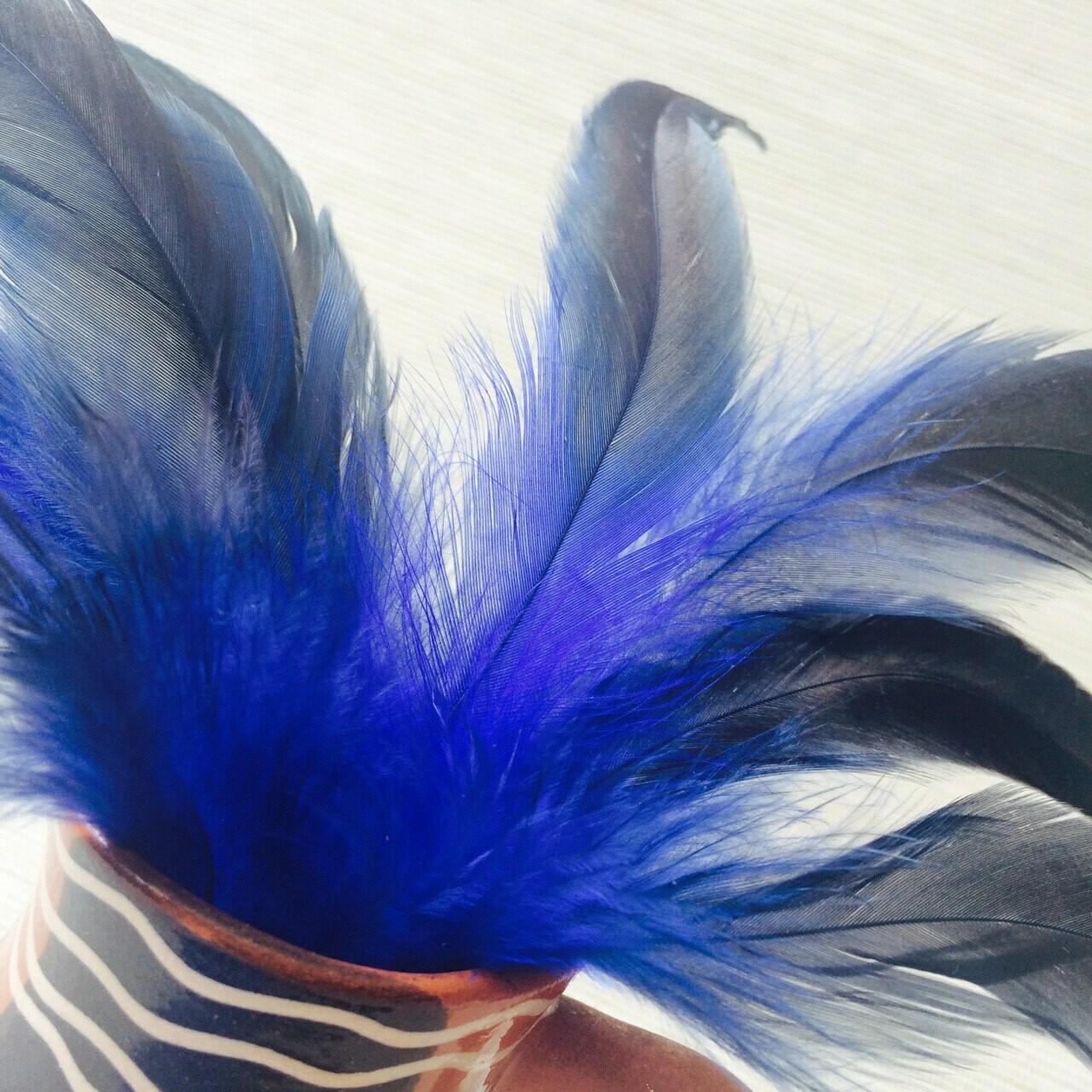 Перья петуха синие двухцветные 10 - 15 см. 20 шт.