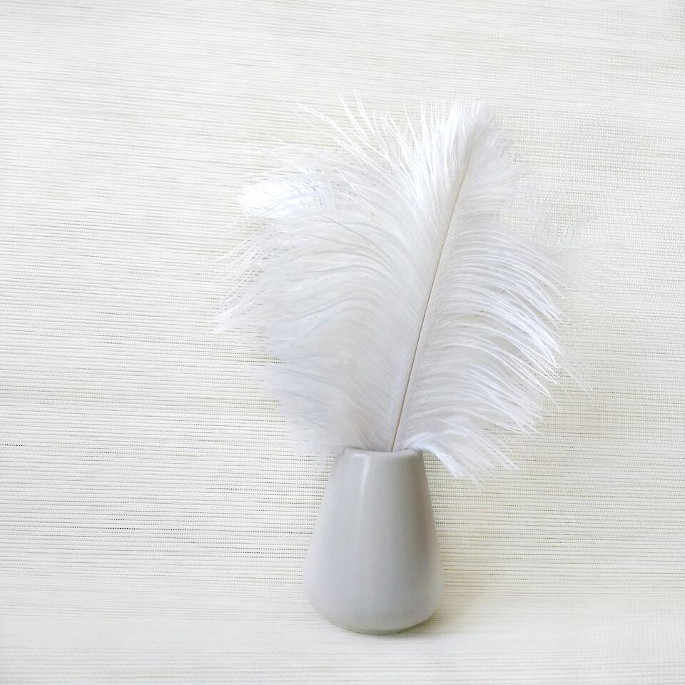 Перо страуса белое 20 - 25 см.