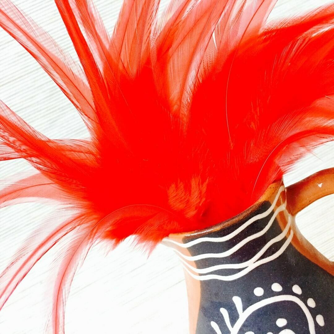 Перья петуха красные 10 - 15 см. 20 шт.