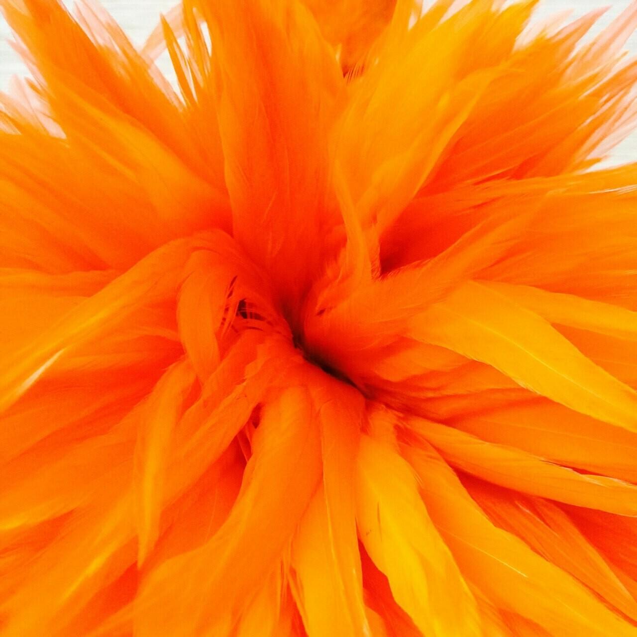 Перья петуха оранжевые 7 - 12 см. 20 шт.