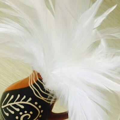 Перья петуха белые 10 - 15 см. 20 шт.