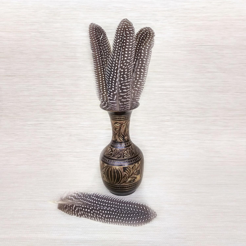 Перо цесарки натуральное 15-20 см.