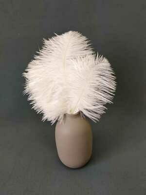 Перо страуса белое 15 - 20 см. 10шт.