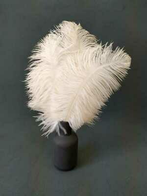Перо страуса белое 20 - 25 см. 10шт.