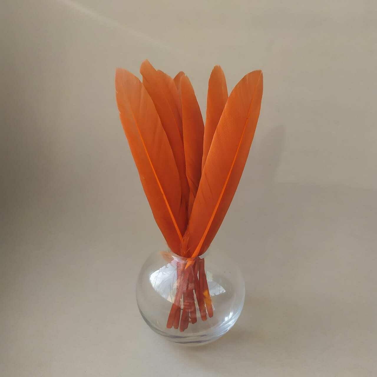 Перья утки морковь 15 шт.