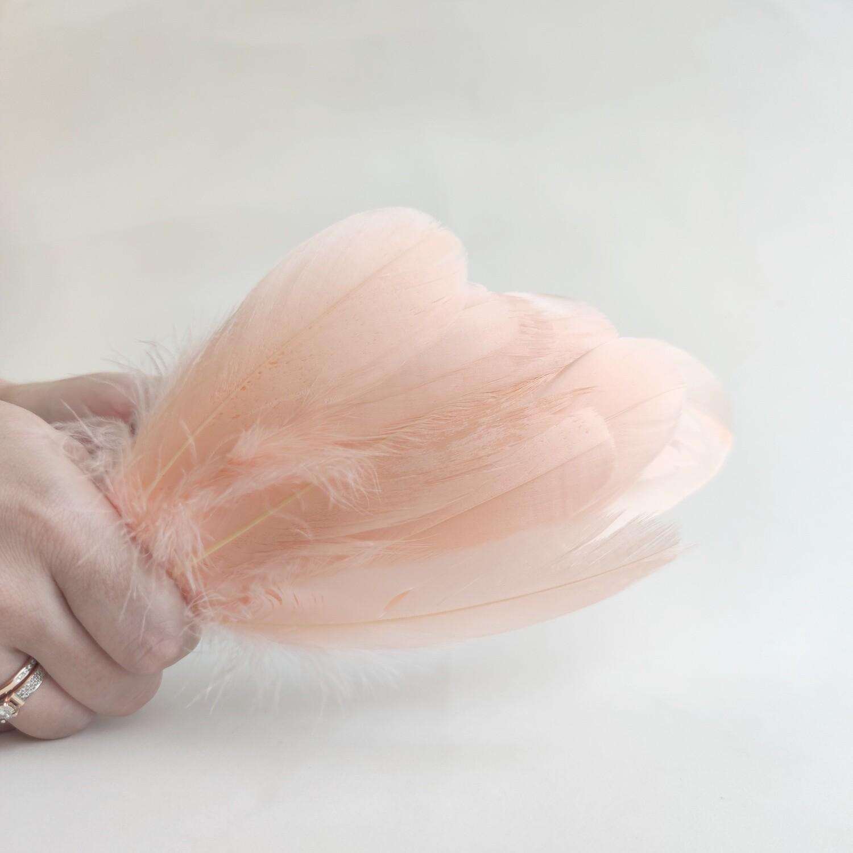 Гусиные перья персиковые 2 сорт 20 шт.