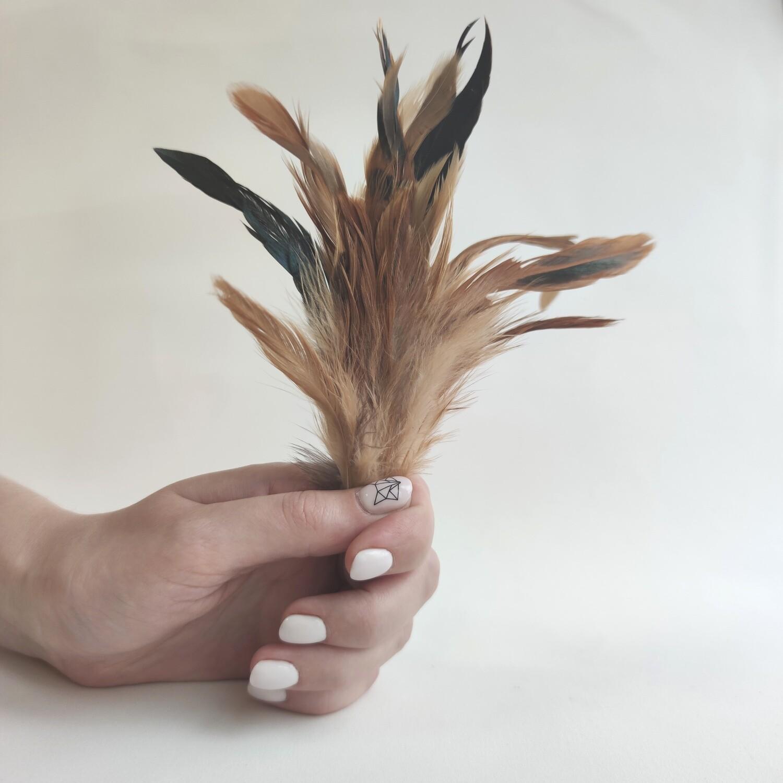 Перья петуха естественные двухцветные 2 сорт 20 шт.