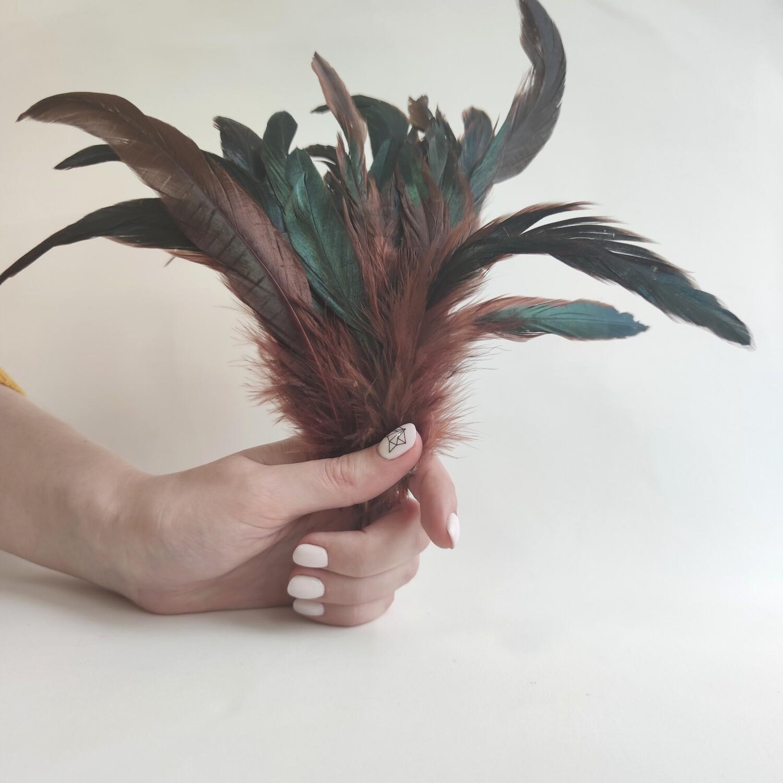 Перья петуха коричневые двухцветные 2 сорт 20 шт.