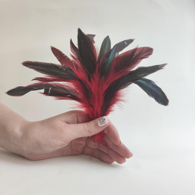 Перья петуха красные двухцветные 2 сорт 20 шт.