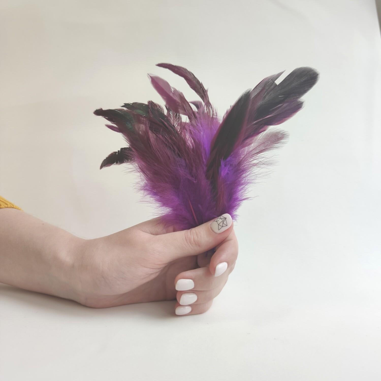 Перья петуха фиолетовые двухцветные 2 сорт 20 шт.